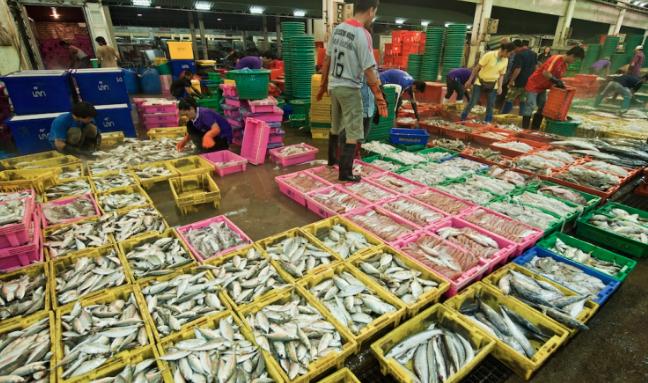 things to do in bangkok, bangkok, fresh market, market, local, fish market