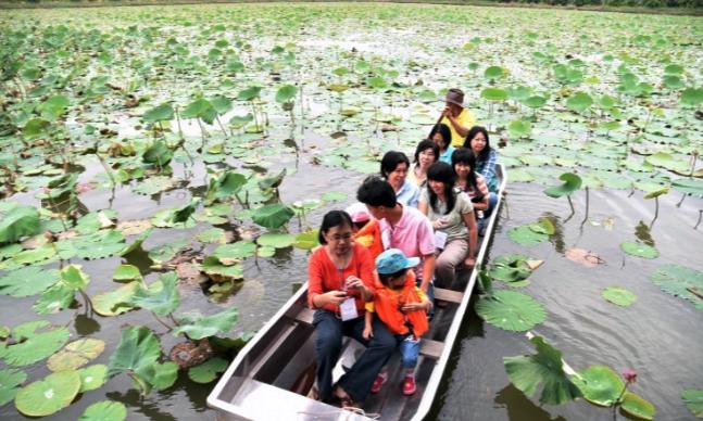 things to do in bangkok, bangkok, cultural experience, community, mahasawat, lotus, boat trip in Bangkok, boat trip, boat trips in Bangkok