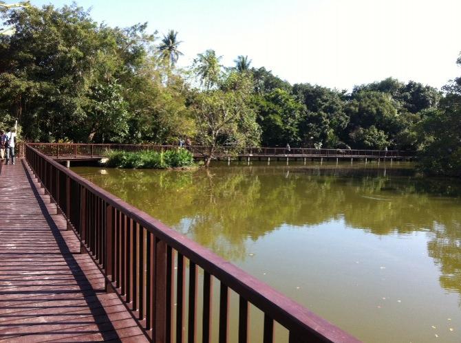 Floating market and the vibe of Bang Ka Jao