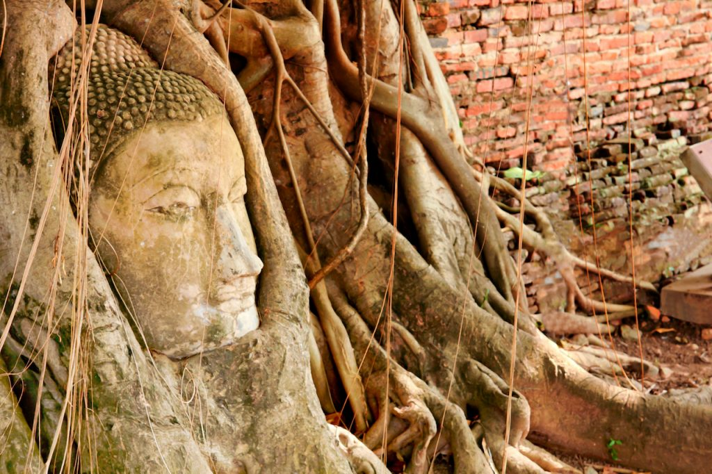 Wat Mahathat – The wonder of history