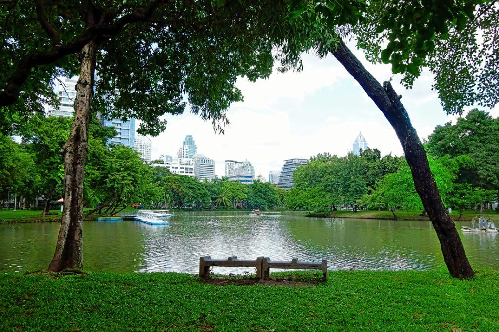 Lumphini Park greenery