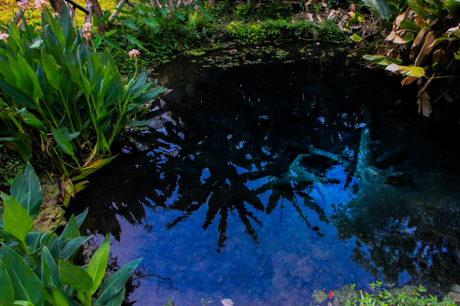 Meet the Local Expert Khun Piangduan Jedsee Fountain