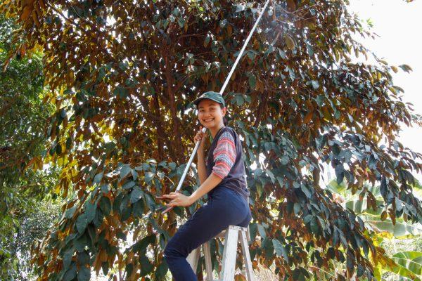 Meet the Local Expert Khun Pat Garden