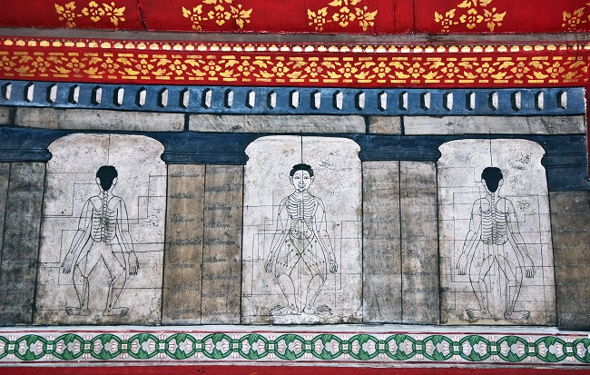 Where to go in Bangkok: Anatomical mural in Wat Pho