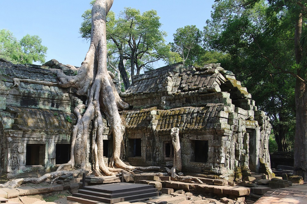 Ta Prohm Temple, Tomb Raider Temple, Ta Prohm Giant Tree, Siem Reap, Cambodia