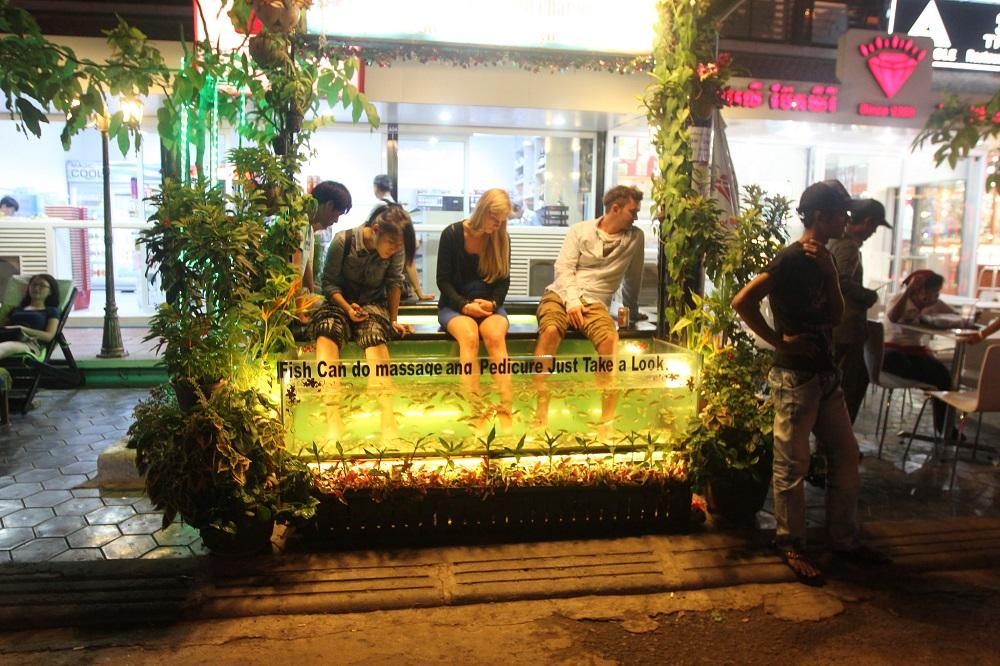 Fish massage pub street Siem Reap