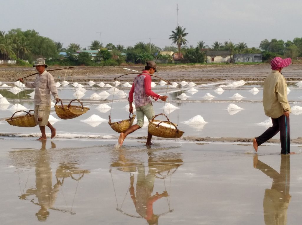 Salt Farm, Kampot, Cambodia